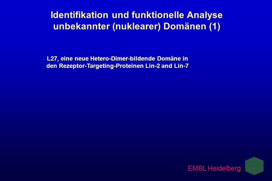 3/21/2017Identifikation und funktionelle Analyse unbekannter (nuklearer) Domänen (1)