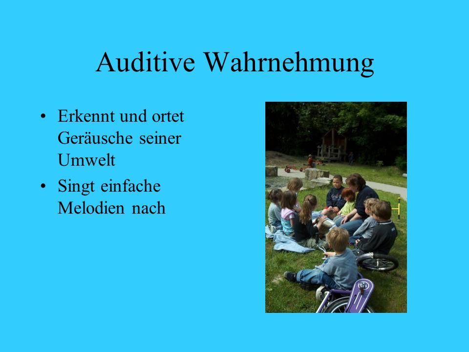 Auditive Wahrnehmung Erkennt und ortet Geräusche seiner Umwelt