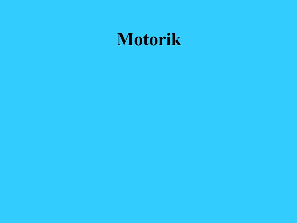Motorik
