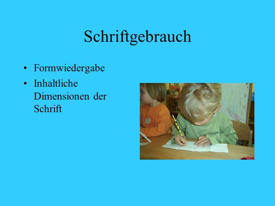 Schriftgebrauch Formwiedergabe Inhaltliche Dimensionen der Schrift