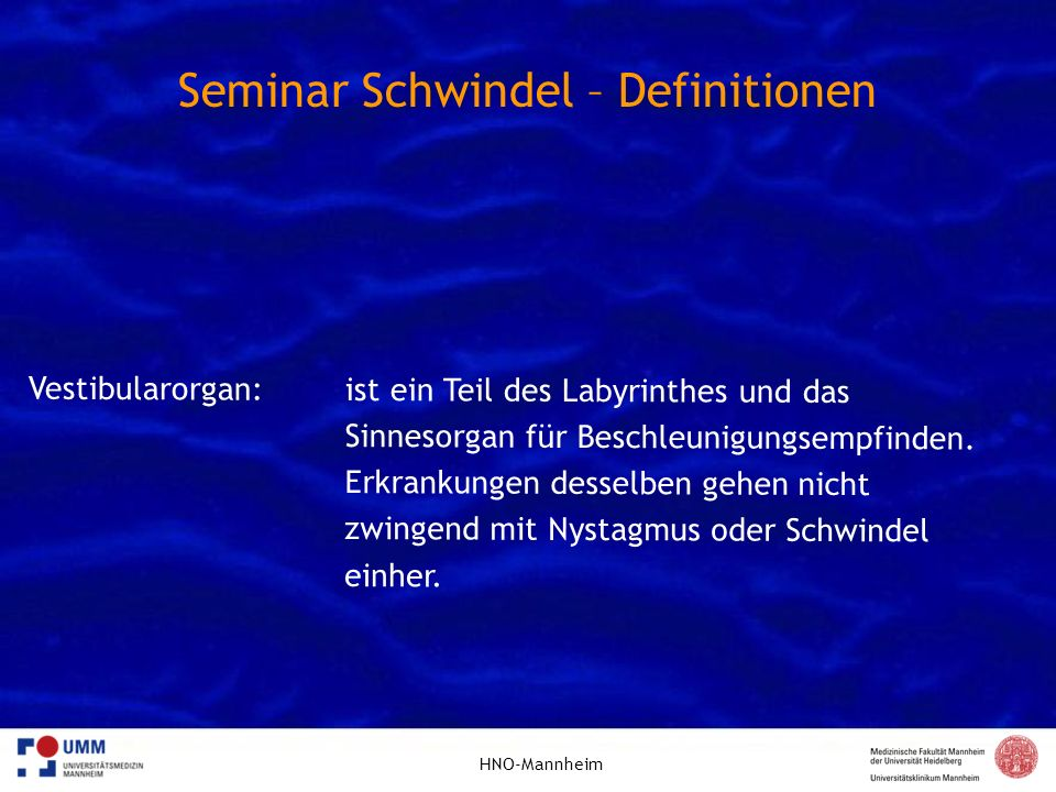 Seminar Schwindel – Definitionen