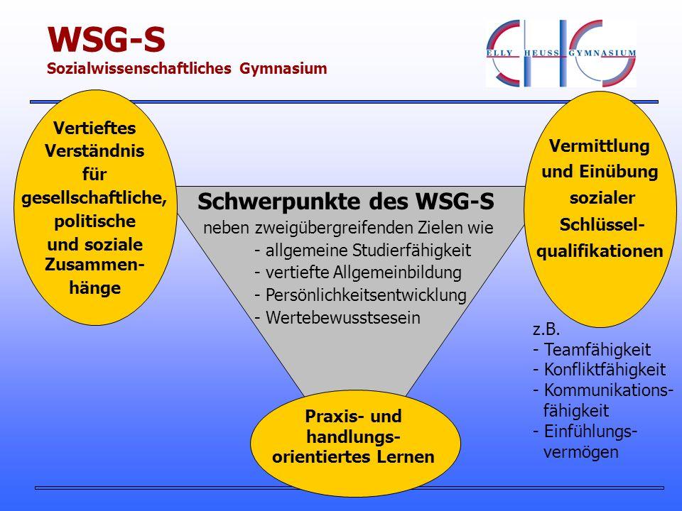 Schwerpunkte des WSG-S