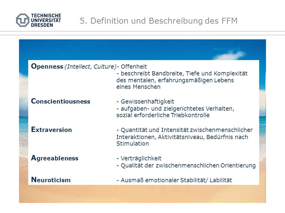 """""""O C E A N 5. Definition und Beschreibung des FFM"""