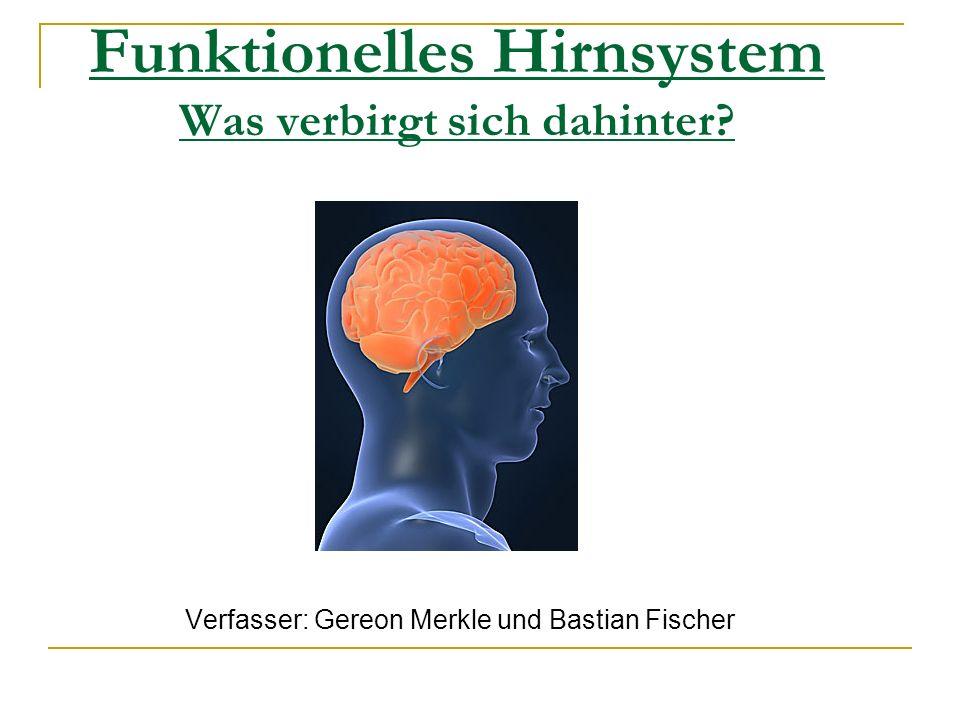 Funktionelles Hirnsystem Was verbirgt sich dahinter