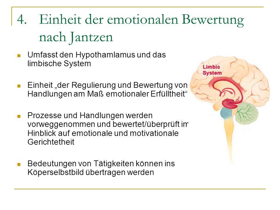 Einheit der emotionalen Bewertung nach Jantzen