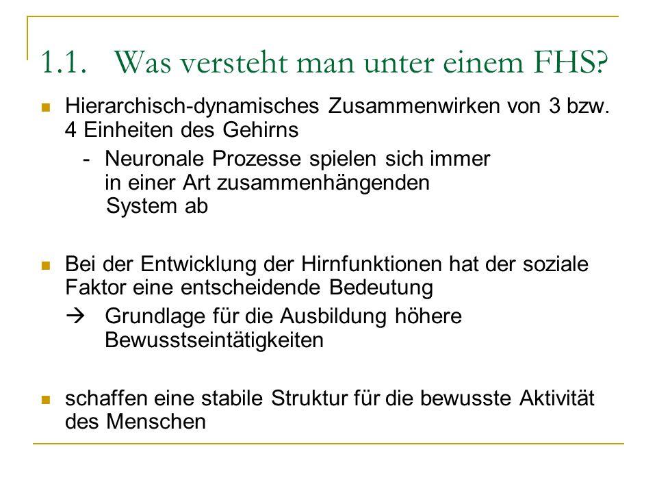 1.1. Was versteht man unter einem FHS