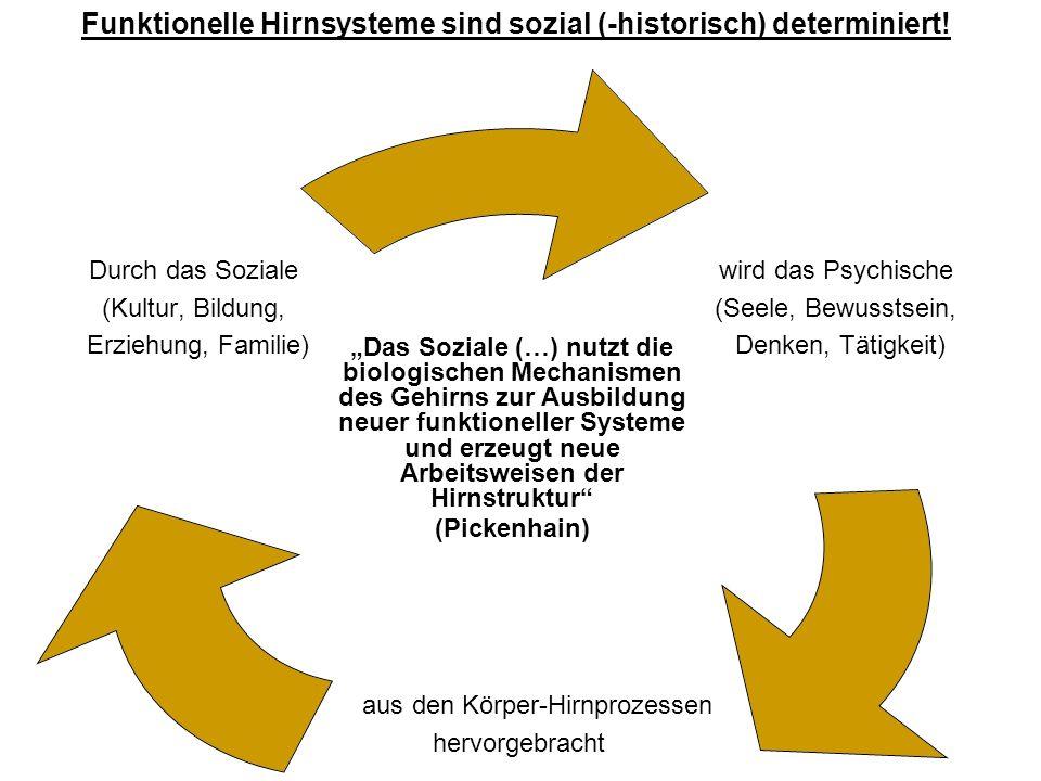 Funktionelle Hirnsysteme sind sozial (-historisch) determiniert!