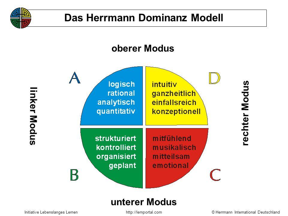 Das Herrmann Dominanz Modell
