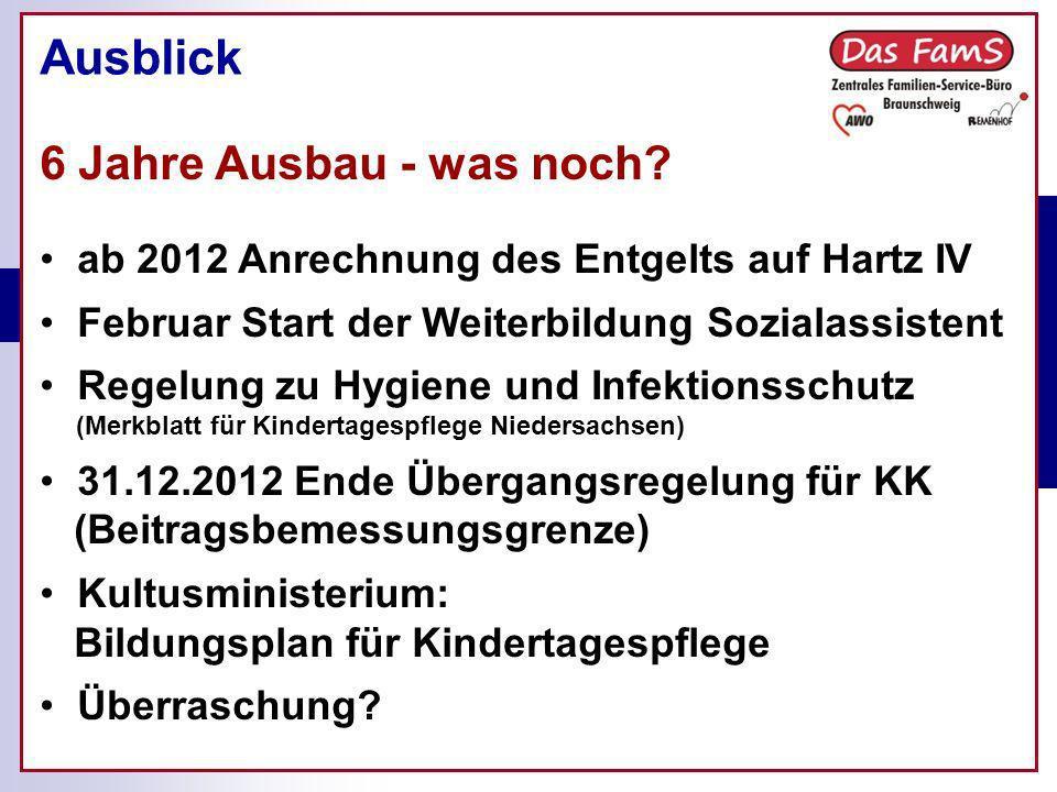 Ist-Stand der Kindertagespflege in Braunschweig Ausblick