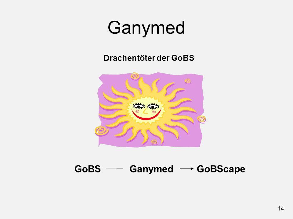 Ganymed Drachentöter der GoBS GoBS Ganymed GoBScape