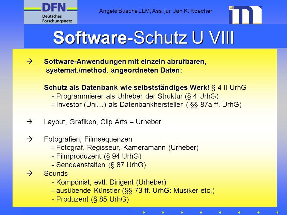 Software-Schutz U VIII