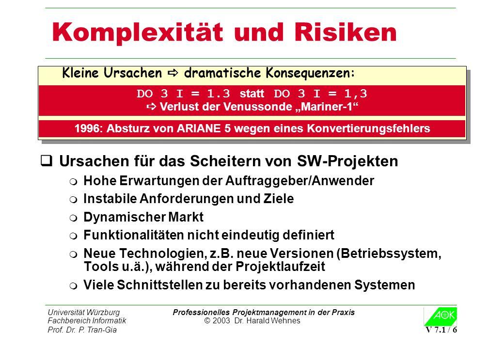 Komplexität und Risiken