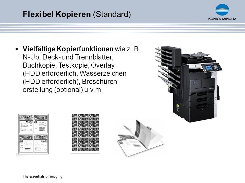 Flexibel Kopieren (Standard)