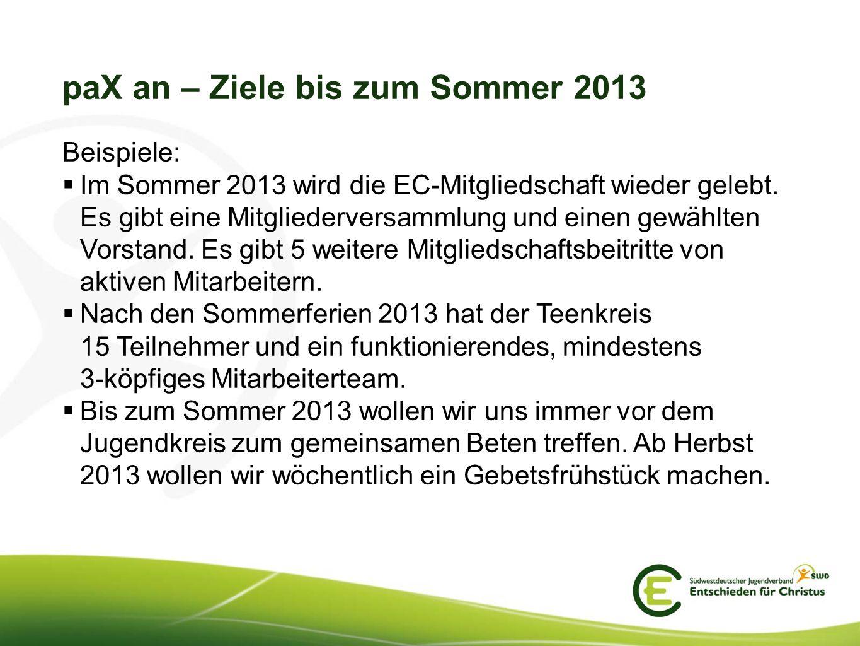 paX an – Ziele bis zum Sommer 2013