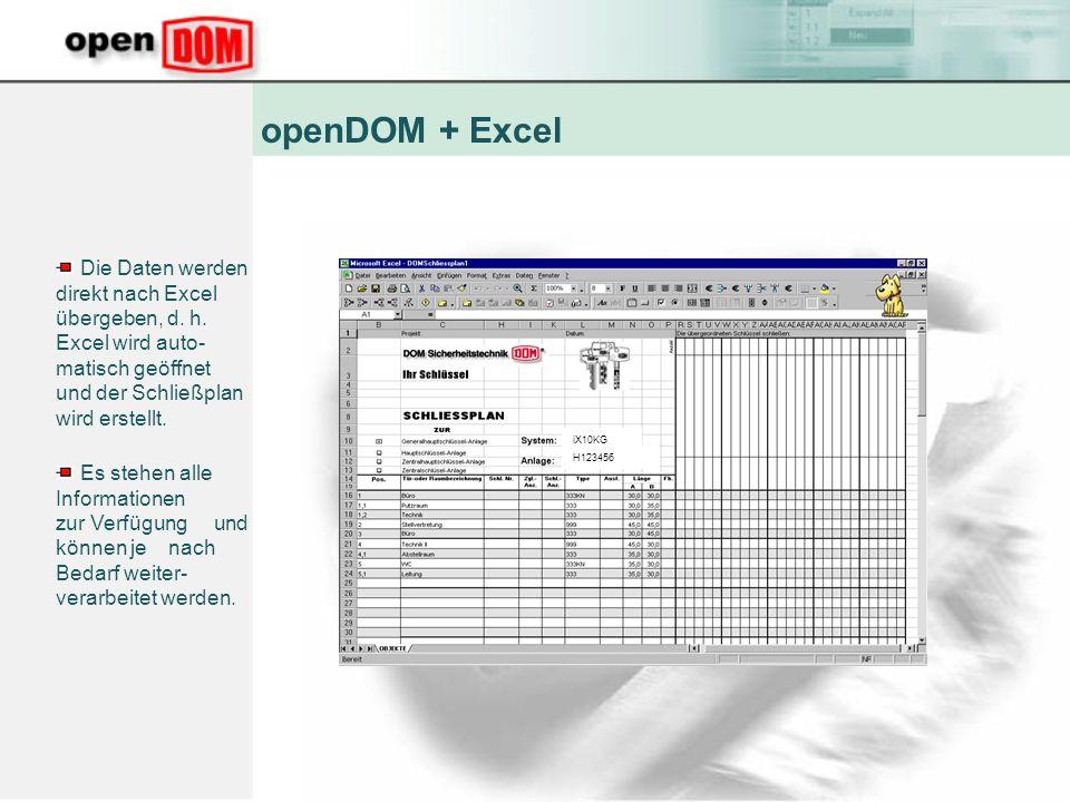 openDOM + Excel Die Daten werden direkt nach Excel übergeben, d. h. Excel wird auto-matisch geöffnet und der Schließplan wird erstellt.