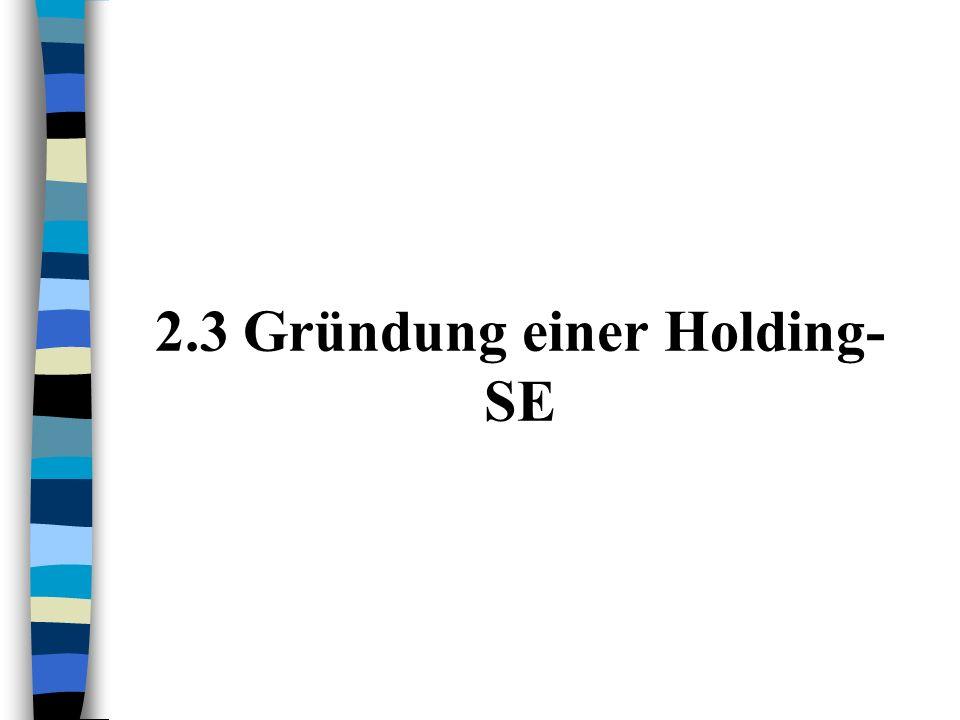 2.3 Gründung einer Holding-SE