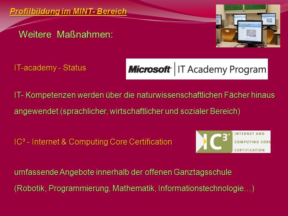 Weitere Maßnahmen: Profilbildung im MINT- Bereich IT-academy - Status