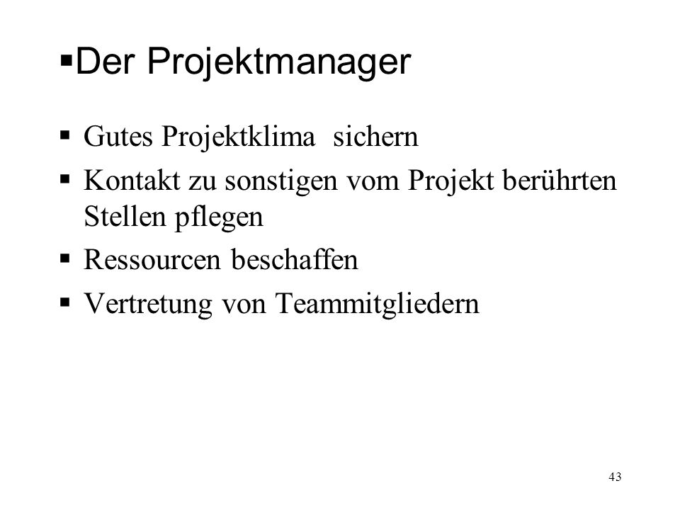 Der Projektmanager Gutes Projektklima sichern