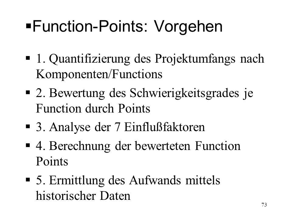 Function-Points: Vorgehen