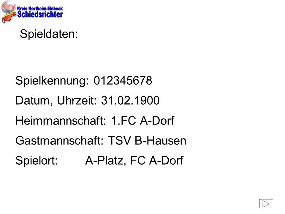 Spieldaten: Spielkennung: 012345678. Datum, Uhrzeit: 31.02.1900. Heimmannschaft: 1.FC A-Dorf. Gastmannschaft: TSV B-Hausen.