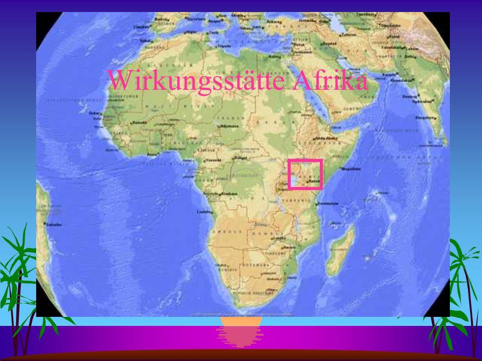 Wirkungsstätte Afrika