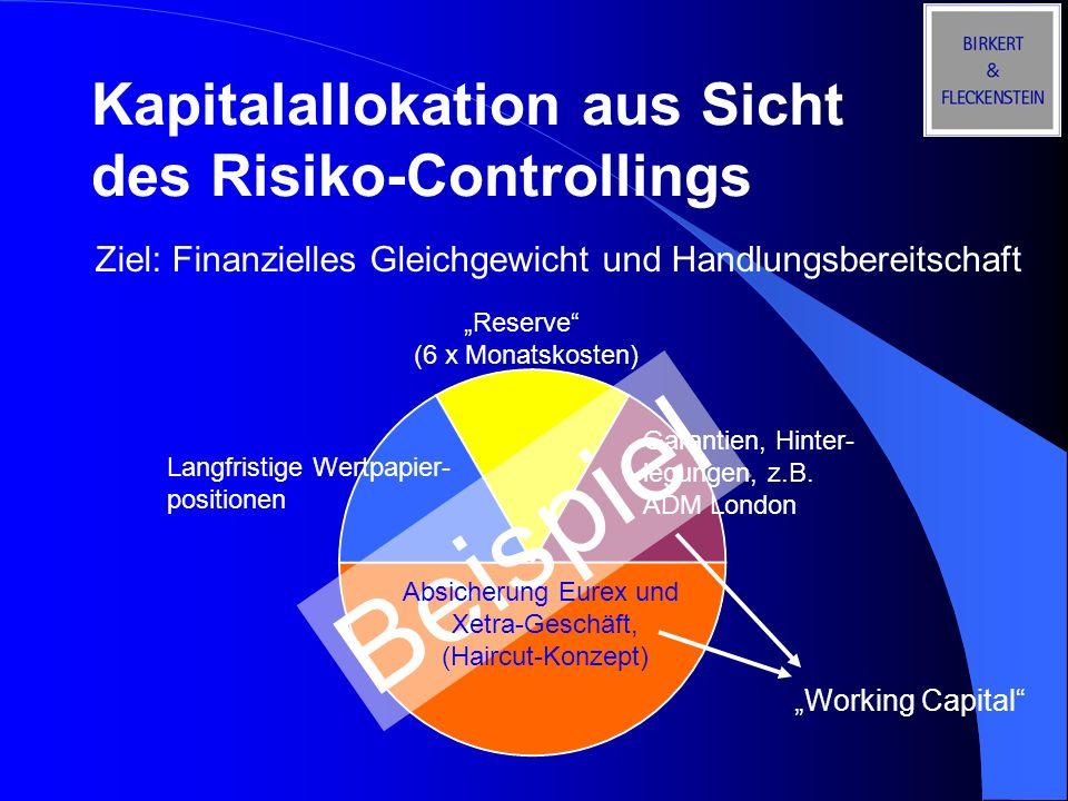 Kapitalallokation aus Sicht des Risiko-Controllings