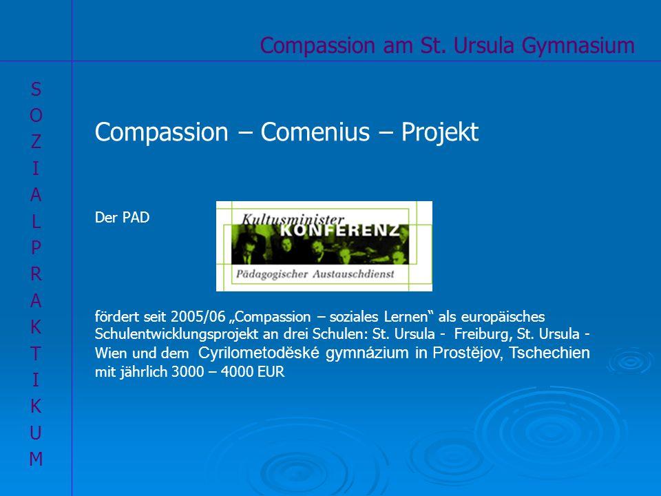 Compassion – Comenius – Projekt