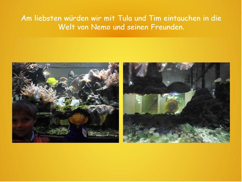 Am liebsten würden wir mit Tula und Tim eintauchen in die Welt von Nemo und seinen Freunden.