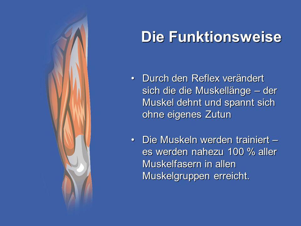 Die Funktionsweise Durch den Reflex verändert sich die die Muskellänge – der Muskel dehnt und spannt sich ohne eigenes Zutun.