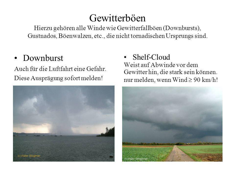 Gewitterböen Hierzu gehören alle Winde wie Gewitterfallböen (Downbursts), Gustnados, Böenwalzen, etc., die nicht tornadischen Ursprungs sind.