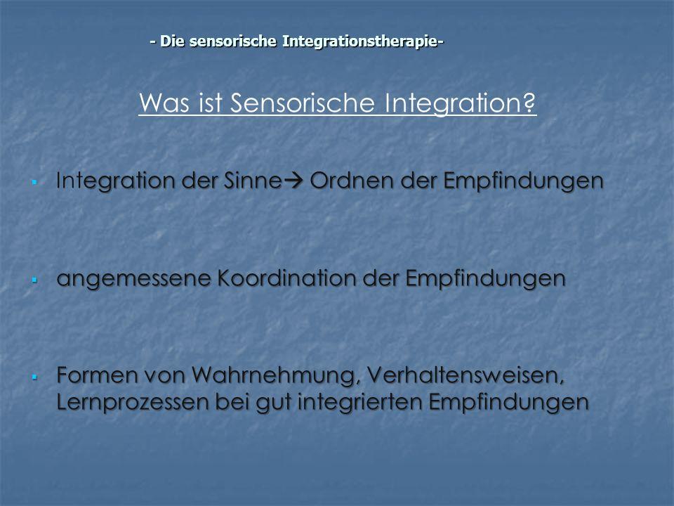 Was ist Sensorische Integration