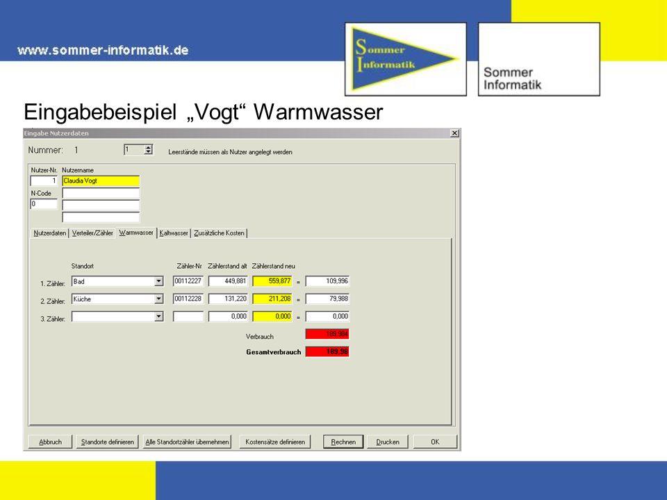 """Eingabebeispiel """"Vogt Warmwasser"""