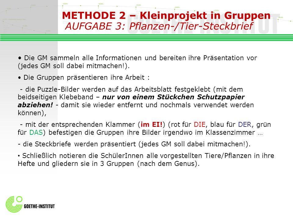 METHODE 2 – Kleinprojekt in Gruppen AUFGABE 3: Pflanzen-/Tier-Steckbrief
