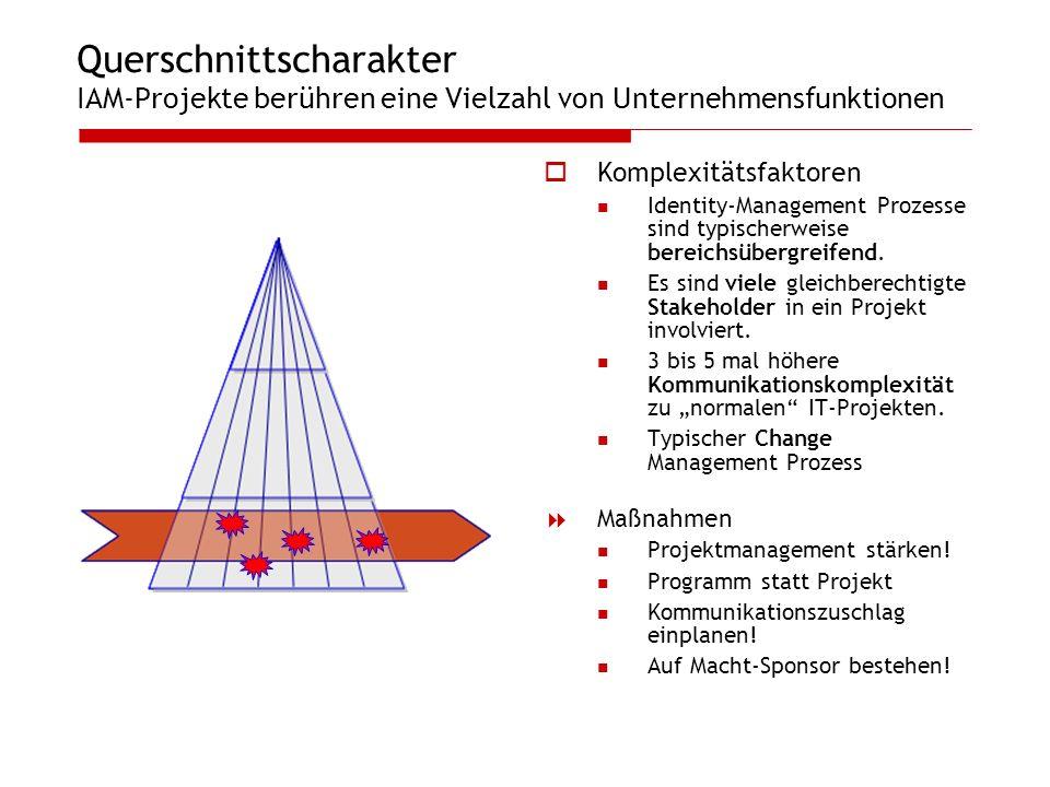 Querschnittscharakter IAM-Projekte berühren eine Vielzahl von Unternehmensfunktionen