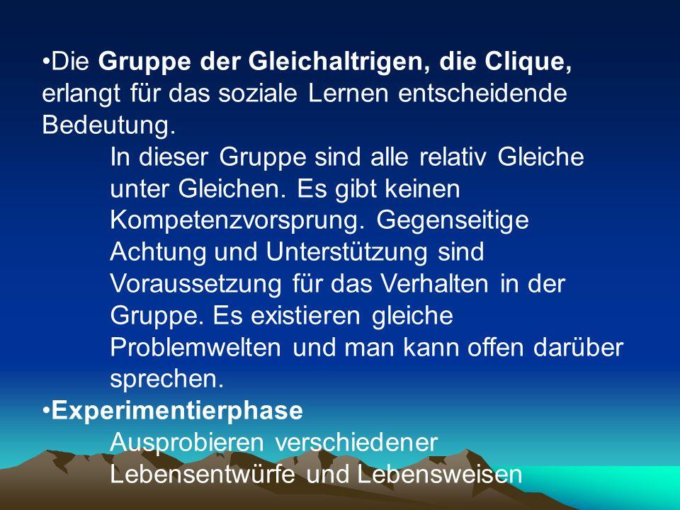 Die Gruppe der Gleichaltrigen, die Clique, erlangt für das soziale Lernen entscheidende Bedeutung.
