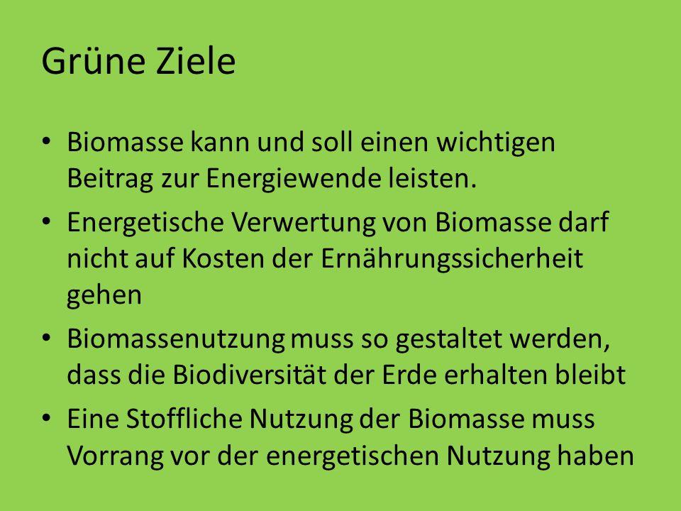 Grüne Ziele Biomasse kann und soll einen wichtigen Beitrag zur Energiewende leisten.