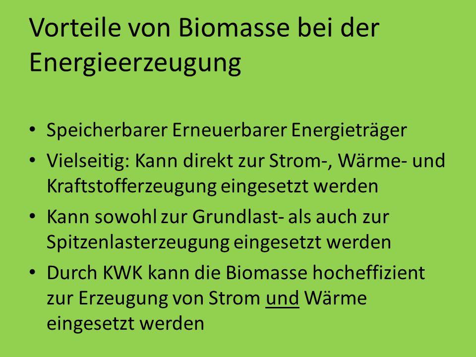 Vorteile von Biomasse bei der Energieerzeugung