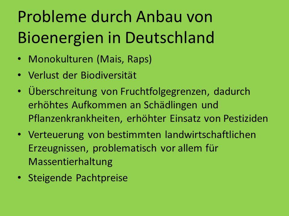 Probleme durch Anbau von Bioenergien in Deutschland