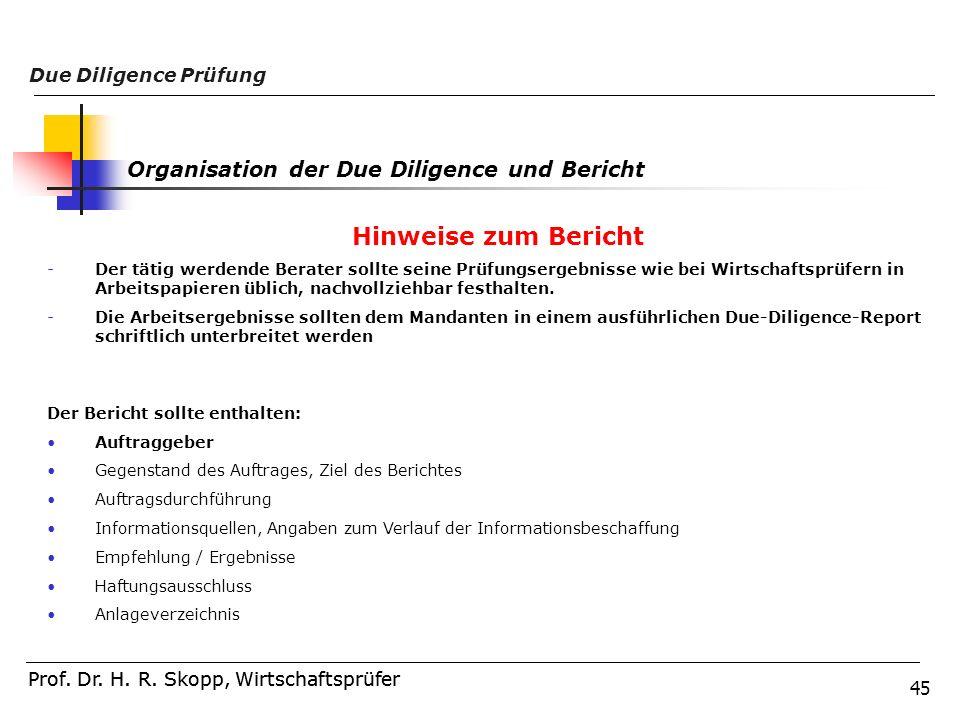 Hinweise zum Bericht Organisation der Due Diligence und Bericht