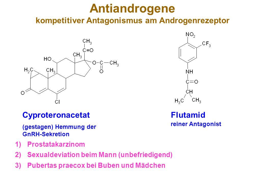 Antiandrogene kompetitiver Antagonismus am Androgenrezeptor