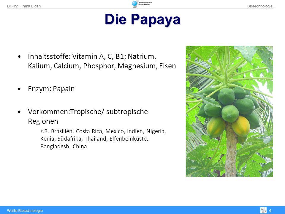 Die PapayaInhaltsstoffe: Vitamin A, C, B1; Natrium, Kalium, Calcium, Phosphor, Magnesium, Eisen. Enzym: Papain.