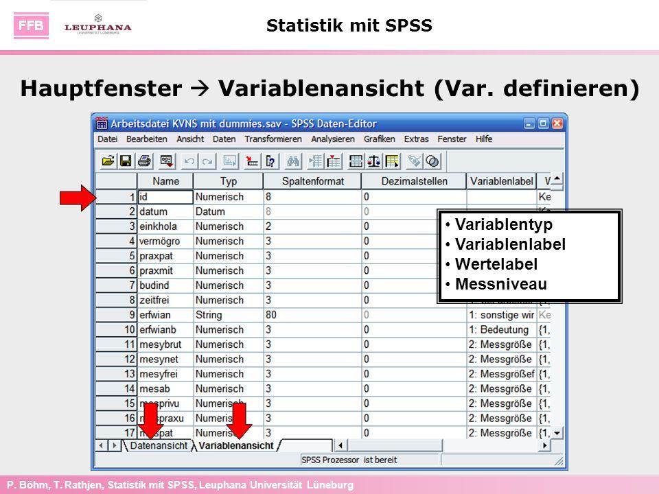 Hauptfenster  Variablenansicht (Var. definieren)