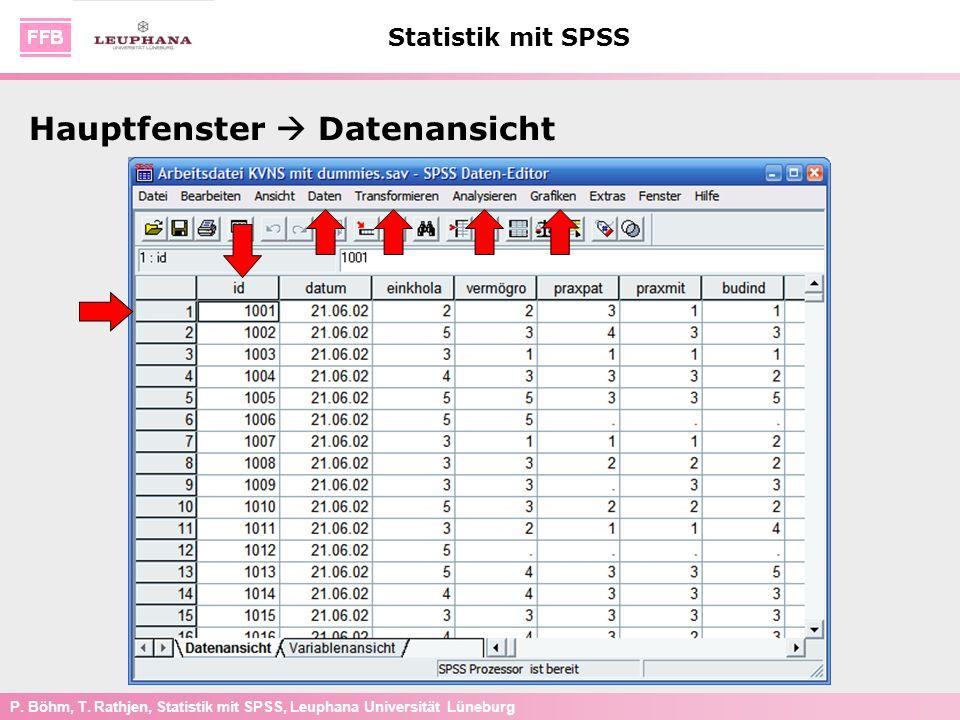 Hauptfenster  Datenansicht