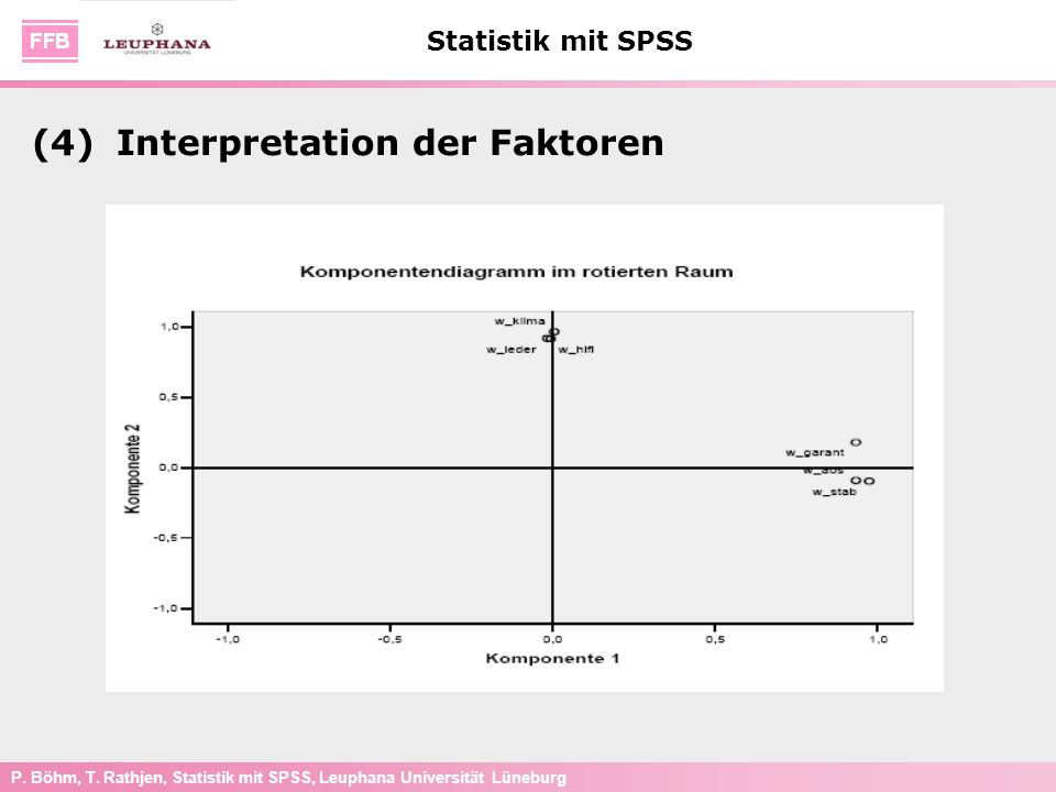 (4) Interpretation der Faktoren