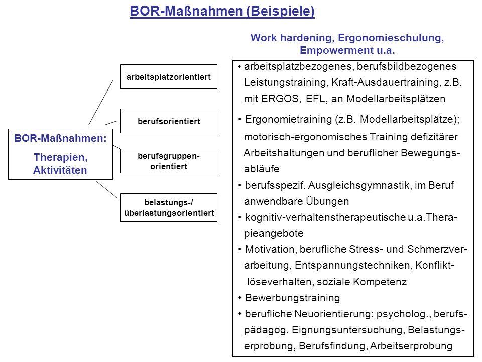 BOR-Maßnahmen (Beispiele)