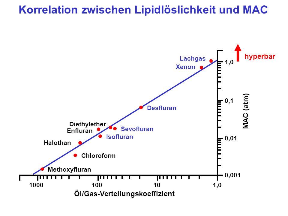 Korrelation zwischen Lipidlöslichkeit und MAC