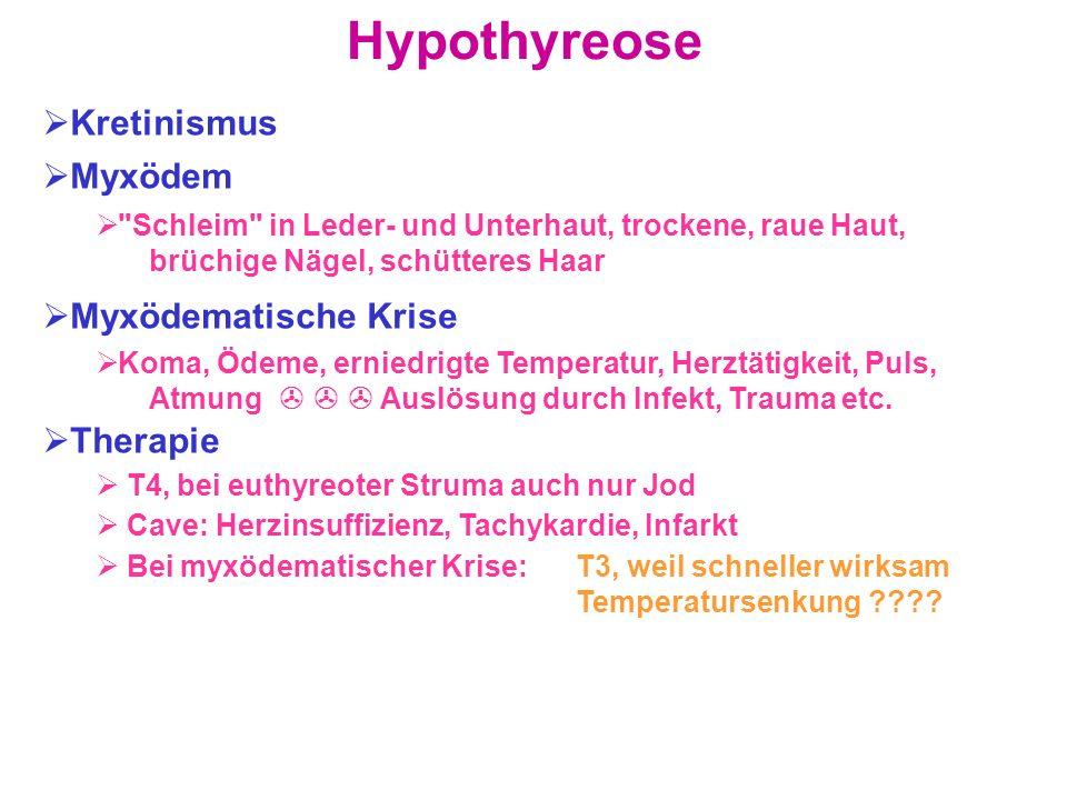 Hypothyreose Kretinismus Myxödem Myxödematische Krise Therapie