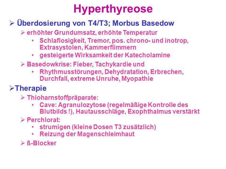 Hyperthyreose Überdosierung von T4/T3; Morbus Basedow Therapie