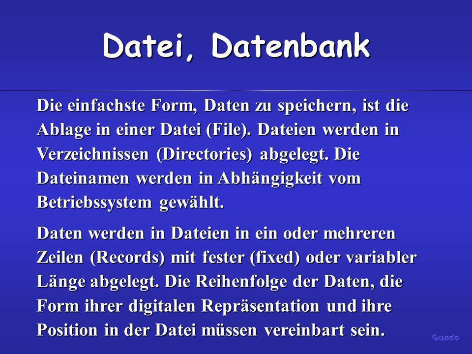Datei, Datenbank