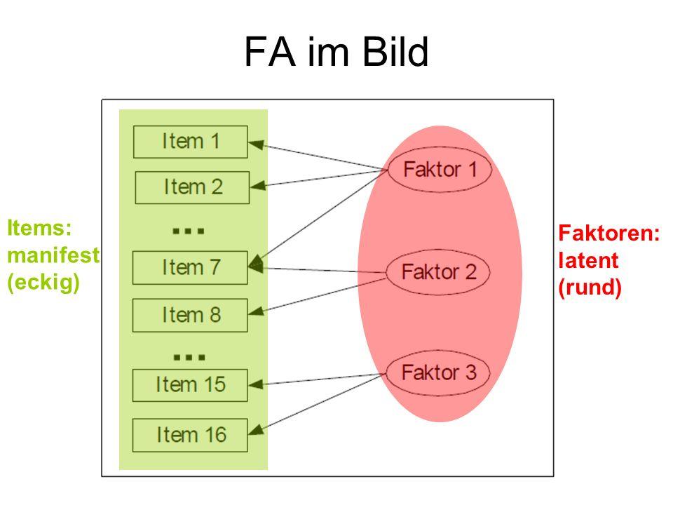 FA im Bild Items: manifest (eckig) Faktoren: latent (rund)